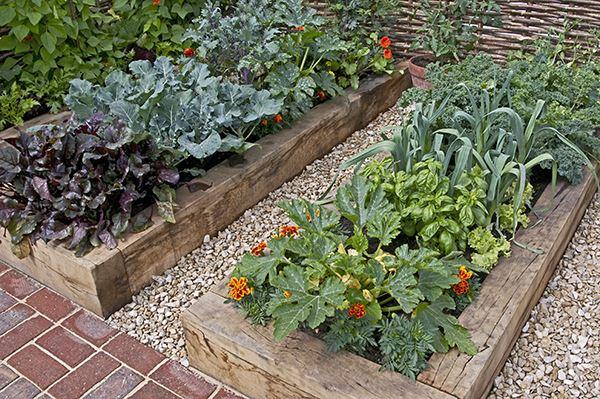 Raised Urban Garden