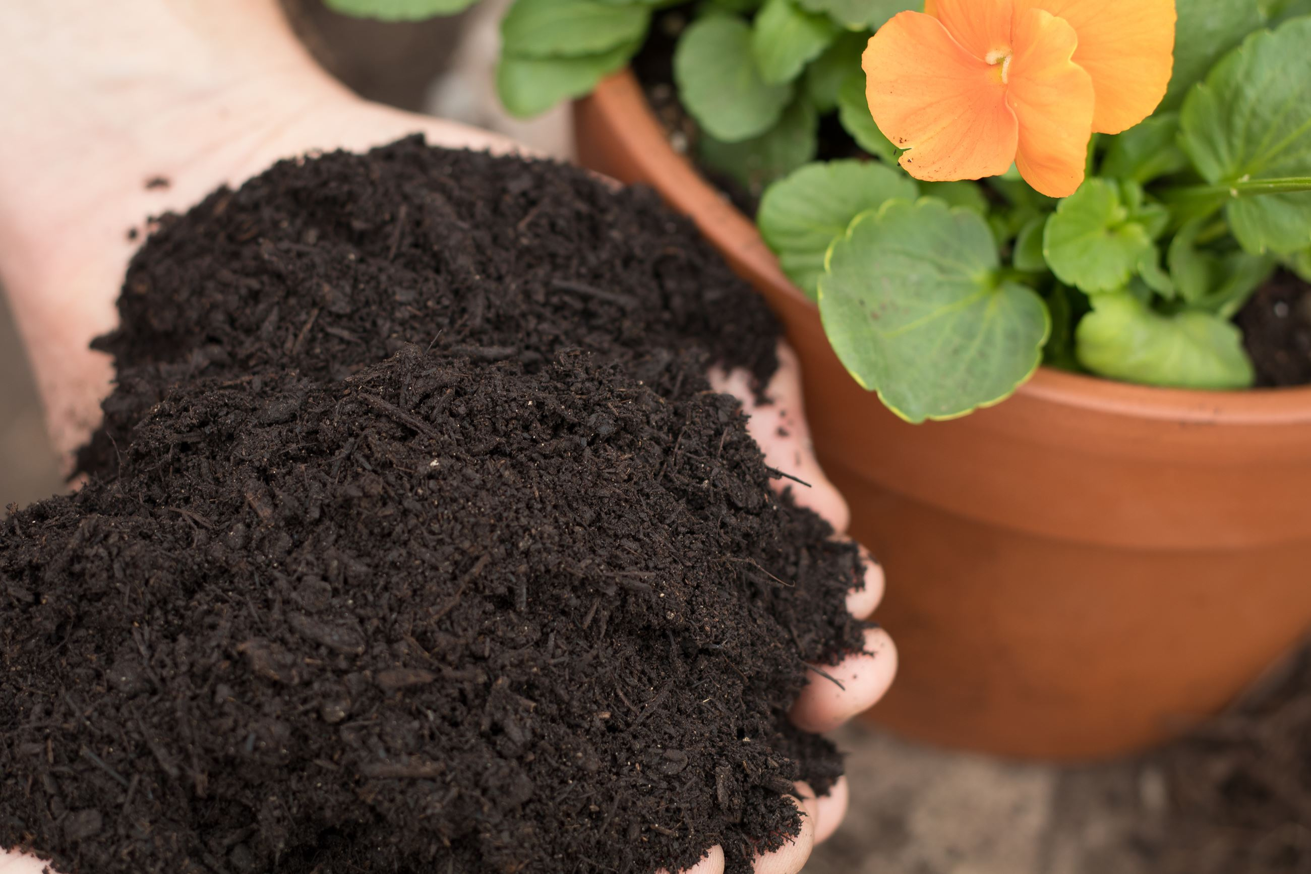 Texas Pure Products Compost Ultra is rich with plant nutrients.